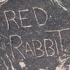 RED-RABBIT