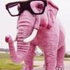 elephantjuice