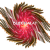 BuddhaKat
