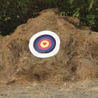 ArchersheART