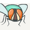 brundellfly
