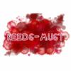 Needs-Must