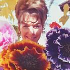 Ann  Warrenton