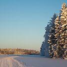 Winter by Kateryna Naumova