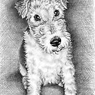 Foxterrier Portrait by Nicole Zeug