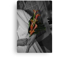 Coloured flowers Canvas Print