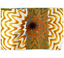 Dale Chihuly, DMA, 2 Poster