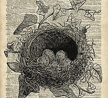 Bird Nest with eggs Over Encyclopedia Page by DictionaryArt