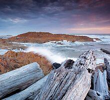 Arthur River (ii), Tasmania, Australia by Matthew Stewart