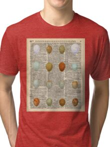 Colourful Eggs Vintage Collage Easter Gift Tri-blend T-Shirt