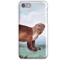 Wolverine vintage art iPhone Case/Skin