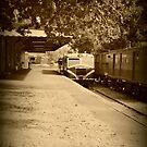 Holga Train by Shara
