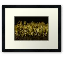 The Devil's Tree Framed Print