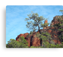 Tall Trees, Rocky Spires Canvas Print