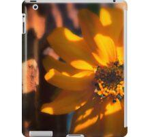 Autumn Shadows iPad Case/Skin