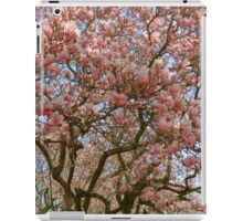 Springtime in Washington DC - 2  ^ iPad Case/Skin