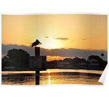 Sunrise on Coffee Pot Bayou Poster