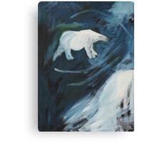 Artic Night Canvas Print