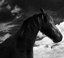 Horse (13-8) by Raymond Kerr
