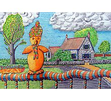 340 - SITTING ON THE FENCE - DAVE EDWARDS - COLOURED PENCILS - 2011 Photographic Print