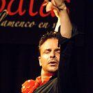 Flamenco #3 by Matt Scott