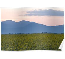 rapeseed field with Kamnik Alps in the background Poster
