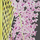 Orchid's Fall by tatoguzman
