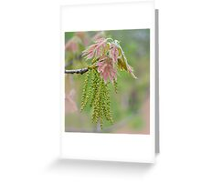 Weeping Willow Blossoms  Greeting Card