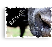Bull Snot!! - Not just an exclamation anymore! Canvas Print