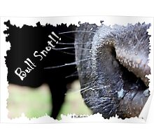 Bull Snot!! - Not just an exclamation anymore! Poster