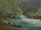 Swiftwater by Karen Ilari