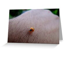 Small Life..Big World 2 Greeting Card