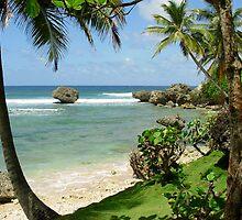 Barbados Scene by Leon Heyns