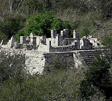 Mayan Jungle Ruins - Yucatan Peninsula, Mexico by Rebel Kreklow