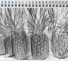 PINEAPPLES SKETCHED by WhiteDove Studio kj gordon