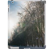 winter road iPad Case/Skin