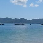 Bedarra Island facing Dunk Island resort by Scott Schrapel
