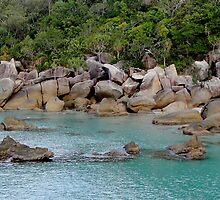Bedarra Island Dorillor Bay  by Scott Schrapel