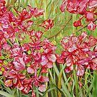 Red Flametree Bundle Close-up by tatoguzman