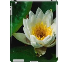 Pure white lily pad flower iPad Case/Skin
