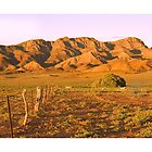 Flinders Ranges 3 by Mark Williamson