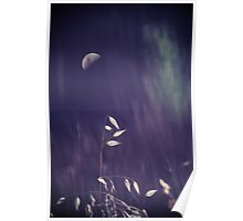 Forgetful Moon Poster