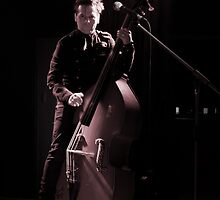 Double Bass by Ricky Pfeiffer