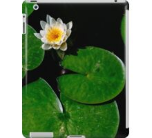 Blooming White lily pad flower iPad Case/Skin