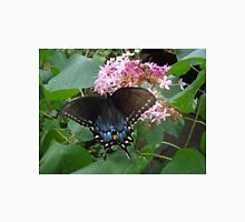 Black Eastern Swallowtail - Summer's End T-Shirt