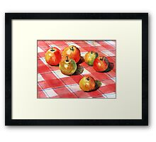 Apples on a check cloth Framed Print