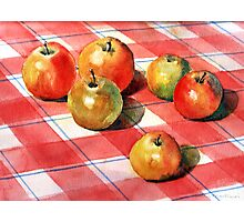 Apples on a check cloth Photographic Print