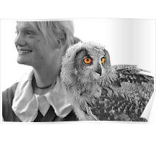 Lady falconer and eurasian eagle owl Poster