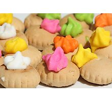 Sweet Biscuits Photographic Print