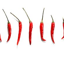 Chilli Peppers  by Rob Fenn